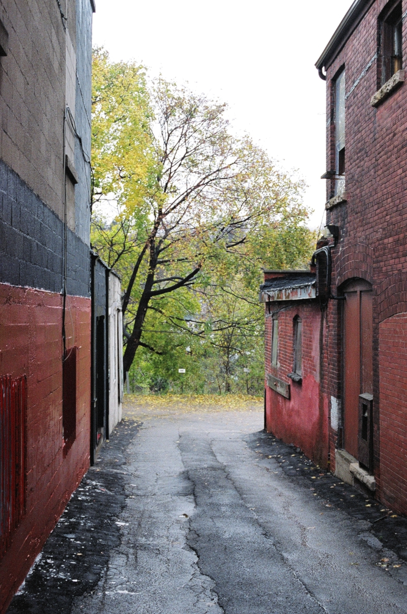 Red Alley 2006